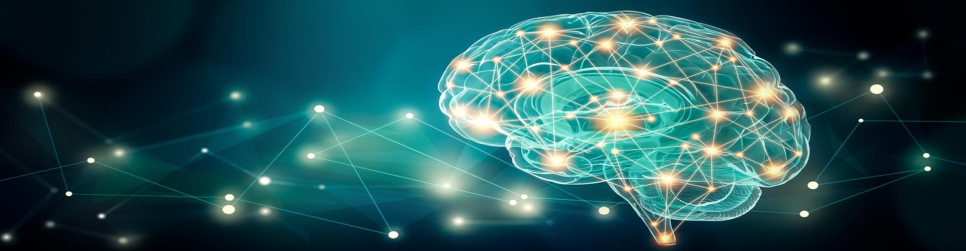 Valutazione Neuropsicologica e Riabilitazione Cognitiva a Biella